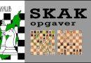Teknikmærke i Bronze, Sølv og Guld hos Morsø Skakklub
